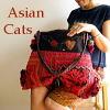 大人のアジアン服